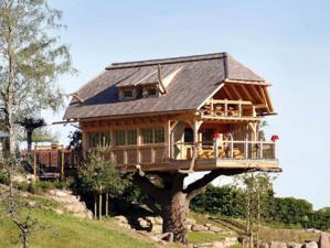 Le sauna sur un arbre perché  - © Hôtel Schwarzwald Tanne Tonbach