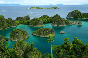 Ile de Pianemo dans l'archipel de Raja Ampat en Papouasie occidentale© O.T. Wonderfull Indonesia