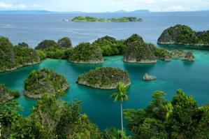 Ile de Pianemo dans l'archipel de Raja Ampat en Papouasie occidentale© O.T. Wonderfull Indonesia
