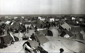 Camp d'Argelès-sur-Mer - © DR