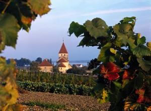 Reichenau, l'Ile du monastère