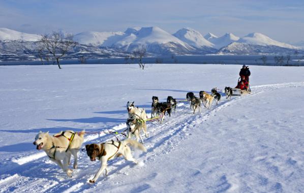 Sommes-nous en Haute-Savoie ou sur les larges étendues polaires du Finnmark ? - © Baard Loeken