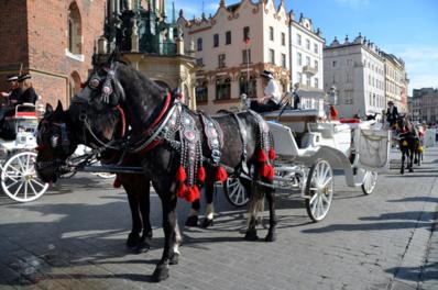 Le Rynek (marché) de Cracovie et ses calèches - © David Raynal