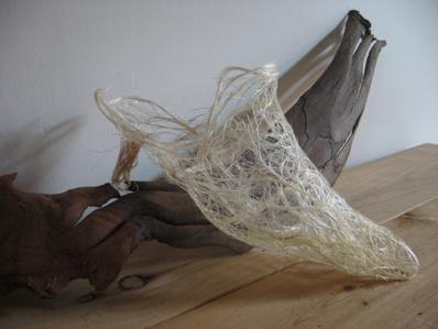 Chaussure par Véronique Zimmerman