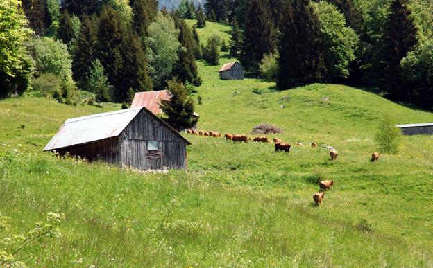 Alpage dans le Massif des Bauges - © OT des Bauges
