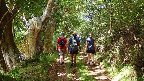 Certaines promenades permettent d'accéder à de très beaux espaces, uniquement accessibles à pied - © Droits réservés