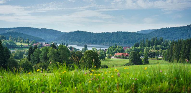 Schluchsee - © OT Bad Wurtemberg