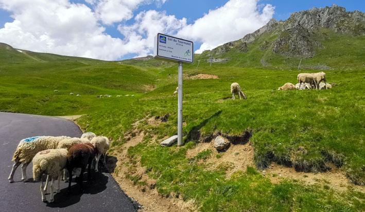 sur la route du Tour Malet - © Dominique Marché