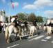 Pèlerinage des gardians à Lourdes