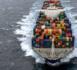 Voyages en cargo, une autre conception de la croisière