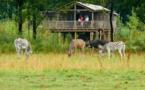 Evasion africaine en Auvergne aux Lodges du PAL