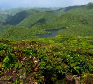 Nouveaux vols Air Antilles vers la Dominique