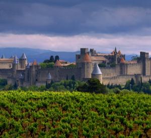 Oenotourisme à Carcassonne