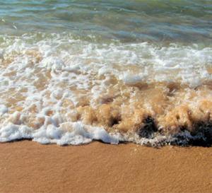 Maroc - Vingt plages labellisées «Pavillon bleu» en 2012