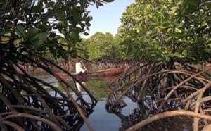 Réserves de Biosphère en Indonésie reconnues par l'UNESCO