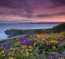 Howth Head - © Tourisme Irlandais