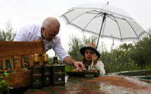 Un chef, une huile, ou la cuisine nature au Domaine Nafissa