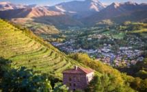 4 nouvelles destinations labellisées « Vignobles & Découvertes »